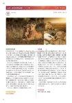 画像14: 新臨床家のためのホメオパシー マテリアメディカ 上下巻セット (14)